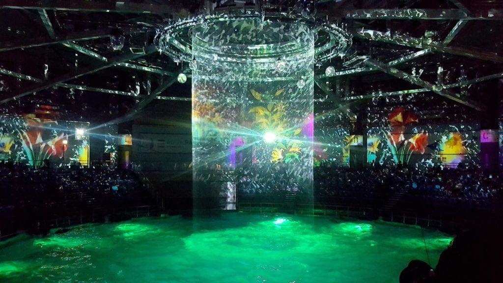 aquapark-event